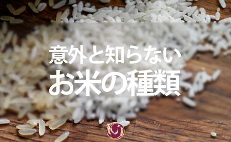 意外と知らない!お米の種類について | お米専門ページ | ピントル