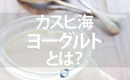 ヨーグルト 作り方 海 カスピ