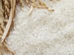お米の種類と焚き方に関するおすすめページ3選